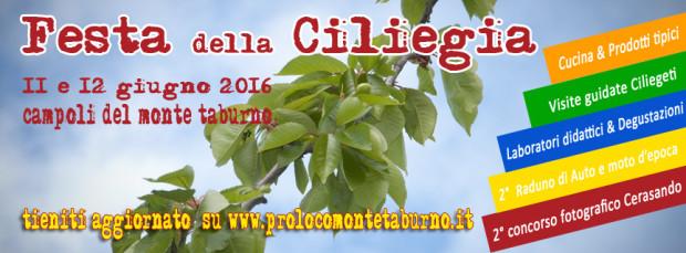 Ciliegia_web_sfondo