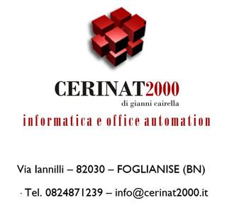 Cerinat 2000 - Informatica